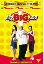 My Big Love -- DVD
